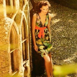 Anthropologie Eva Franco Oroya Cactus Dress
